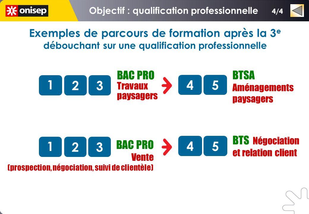 3/4 BAC PRO Technicien dusinage 1 23 BAC PRO Technicien menuisier agenceur 1 23 BAC PRO Maintenance de véhicules automobiles option voitures particuli