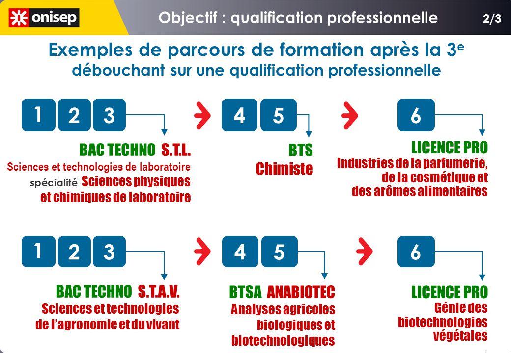 BAC TECHNO S.T.G. Sciences et technologies de la gestion Comptabilité et finance dentreprise 1 23 BTS Comptabilité et gestion des organisations 45 BAC