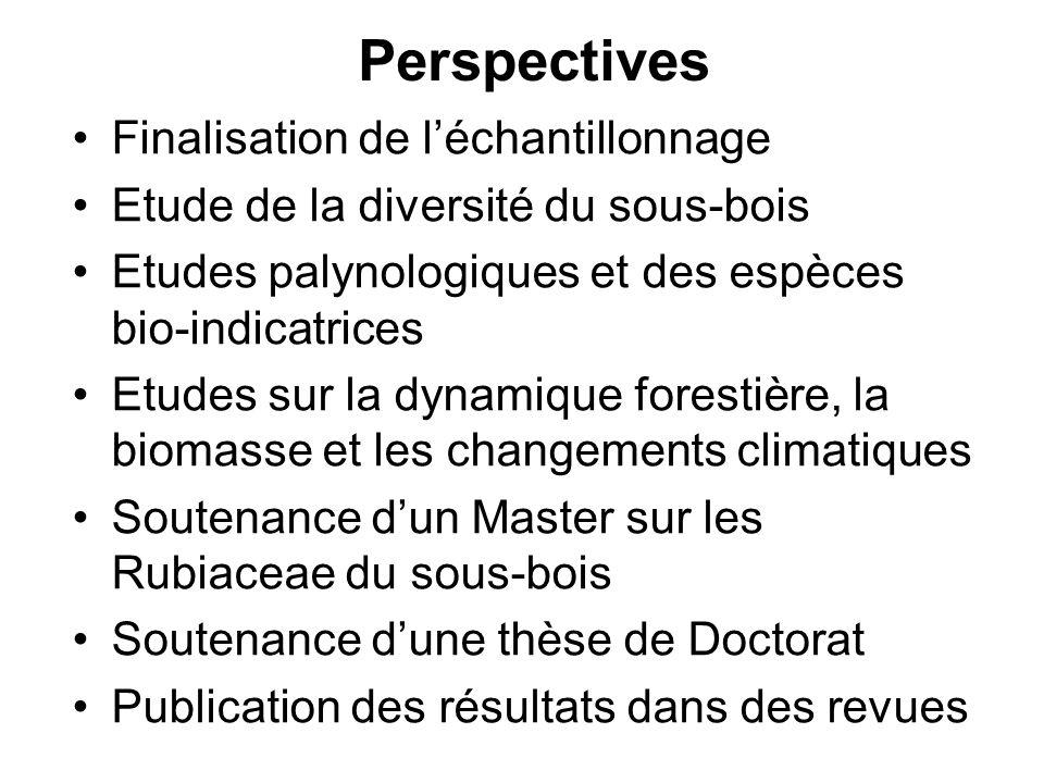 Perspectives Finalisation de léchantillonnage Etude de la diversité du sous-bois Etudes palynologiques et des espèces bio-indicatrices Etudes sur la d