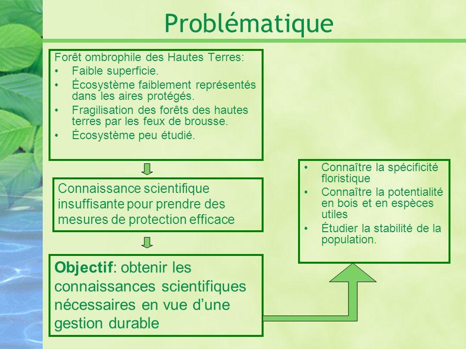 Problématique Forêt ombrophile des Hautes Terres: Faible superficie. Écosystème faiblement représentés dans les aires protégés. Fragilisation des forê