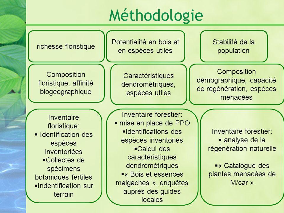 Méthodologie Inventaire floristique: Identification des espèces inventoriées Collectes de spécimens botaniques fertiles Indentification sur terrain ri