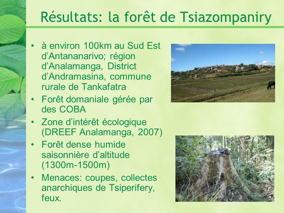 Résultats: la forêt de Tsiazompaniry à environ 100km au Sud Est dAntananarivo; région dAnalamanga, District dAndramasina, commune rurale de Tankafatra