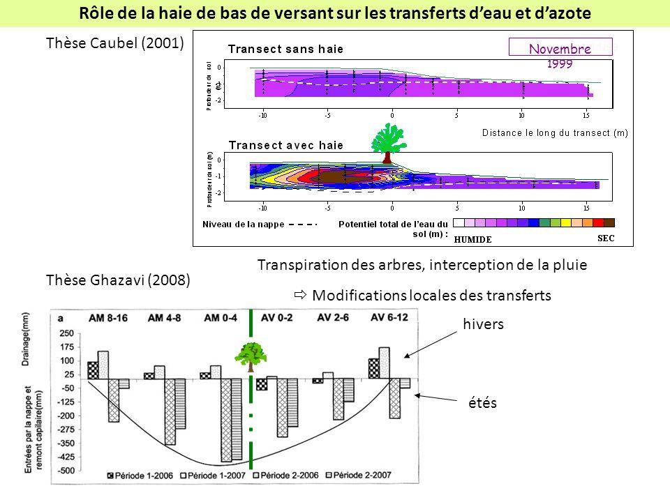 Thèse Caubel (2001) Thèse Ghazavi (2008) Rôle de la haie de bas de versant sur les transferts deau et dazote Transpiration des arbres, interception de