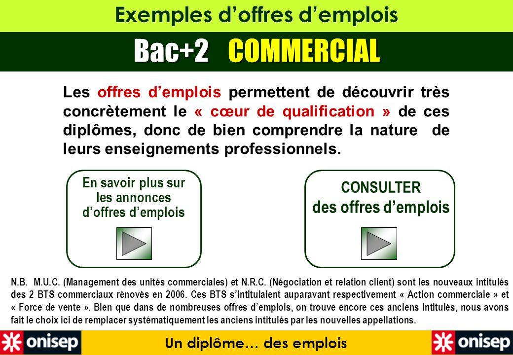 Exemples doffres demplois Bac+2 COMMERCIAL En savoir plus sur les annonces doffres demplois CONSULTER des offres demplois Un diplôme… des emplois Les