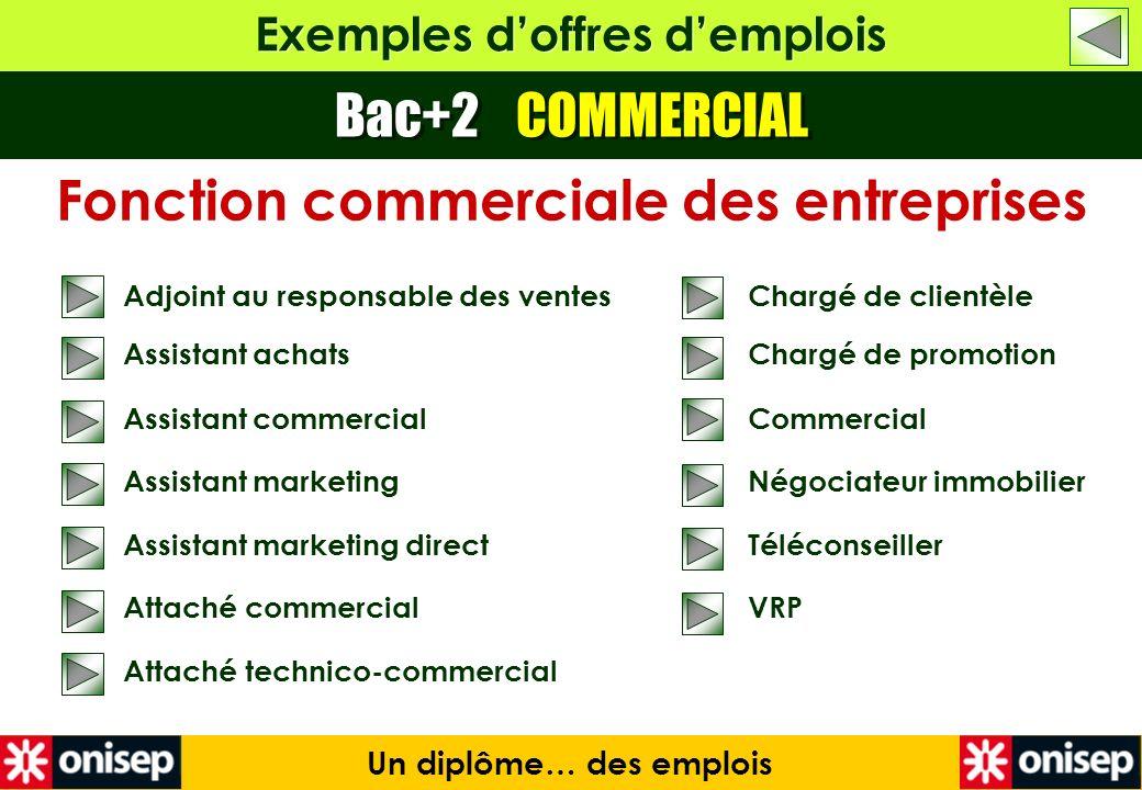 Exemples doffres demplois Bac+2 COMMERCIAL Un diplôme… des emplois Fonction commerciale des entreprises Adjoint au responsable des ventes Assistant ac