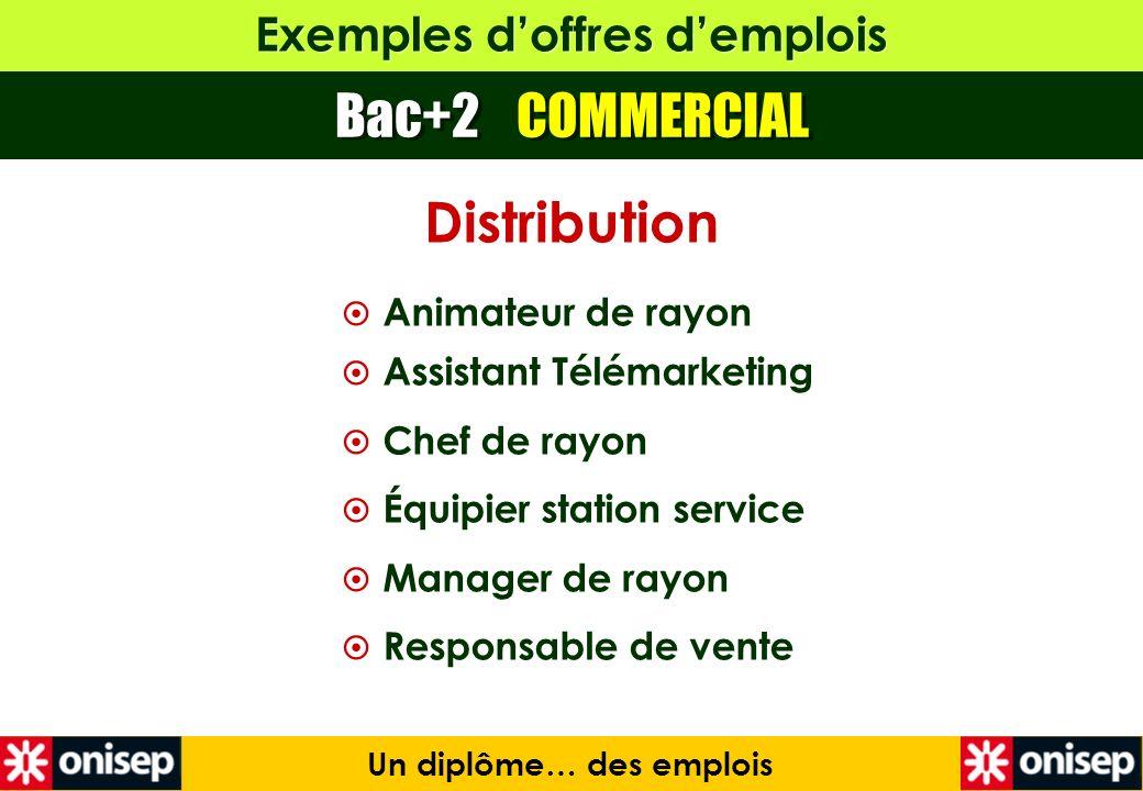 Exemples doffres demplois Bac+2 COMMERCIAL Un diplôme… des emplois Distribution Animateur de rayon Assistant Télémarketing Chef de rayon Équipier stat
