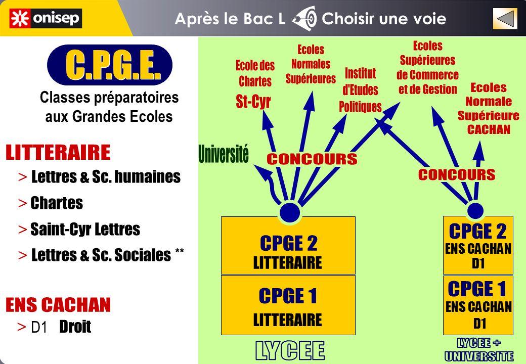 Après le Bac L Choisir une voie C.P.G.E. Classes préparatoires aux Grandes Ecoles C.P.G.E. Classes préparatoires aux Grandes Ecoles > Lettres & Sc. hu