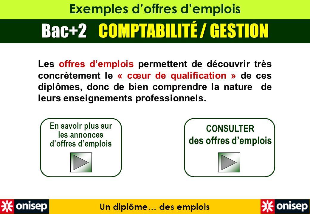 Exemples doffres demplois Bac+2 COMPTABILITÉ / GESTION En savoir plus sur les annonces doffres demplois CONSULTER des offres demplois Un diplôme… des