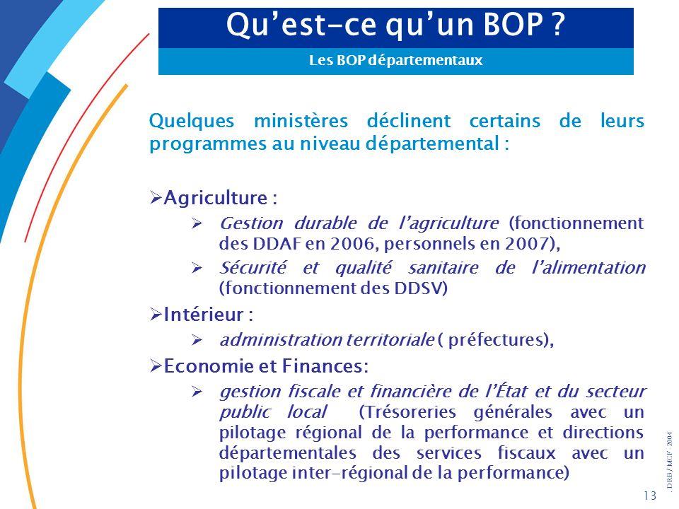 . DRB/ MCF - 2004 13 Quelques ministères déclinent certains de leurs programmes au niveau départemental : Agriculture : Gestion durable de lagricultur
