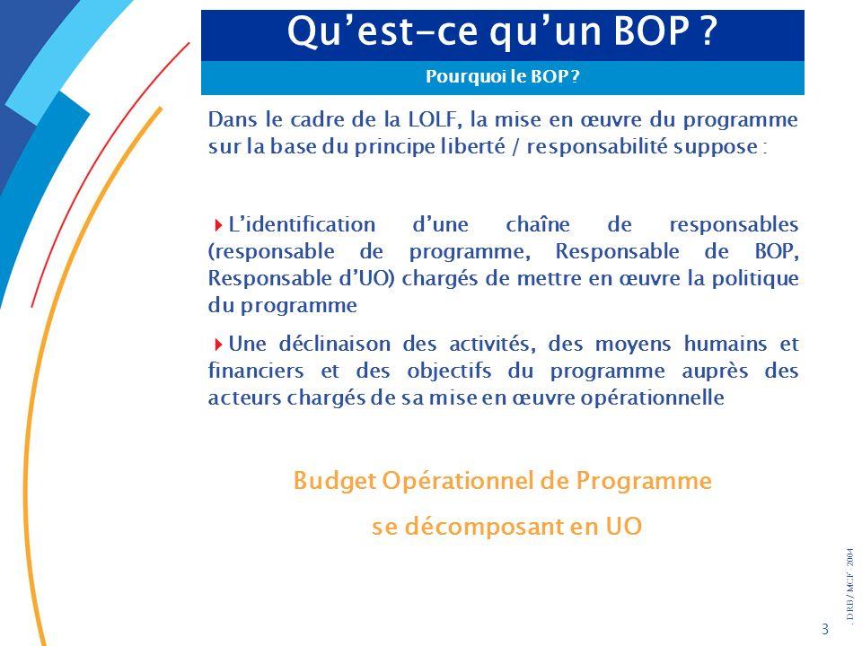 . DRB/ MCF - 2004 44 Synthèse : les acteurs de lélaboration du BOPCentral Niveau BOP UO CHARTE DE GESTION Éléments de cadrage ministériel + Éléments de cadrage du programme Projet de BOP Via Préfet RPROG BOP approuvé Avis CF BOP U0 1U0 2U0 X