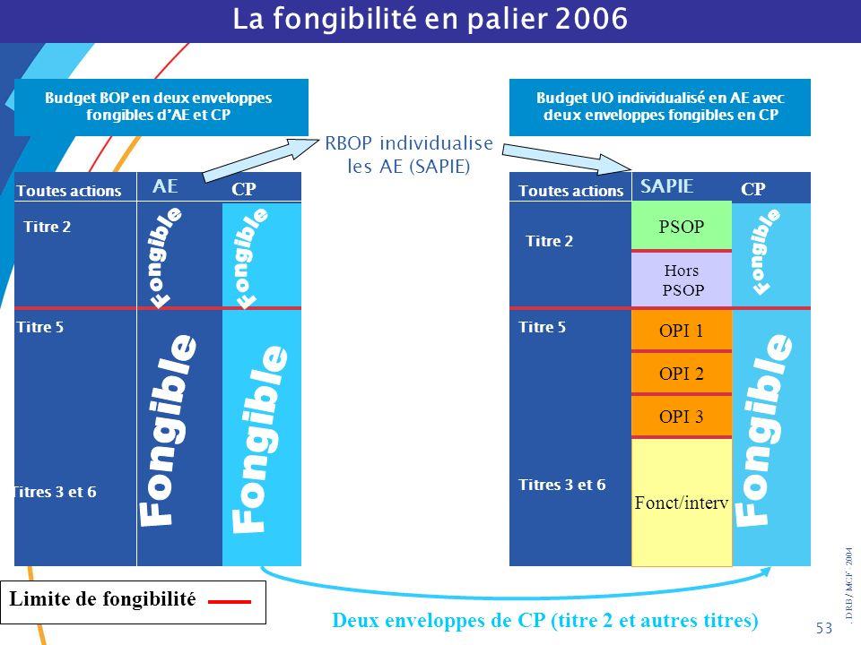 . DRB/ MCF - 2004 53 La fongibilité en palier 2006 RBOP individualise les AE (SAPIE) Budget UO individualisé en AE avec deux enveloppes fongibles en C