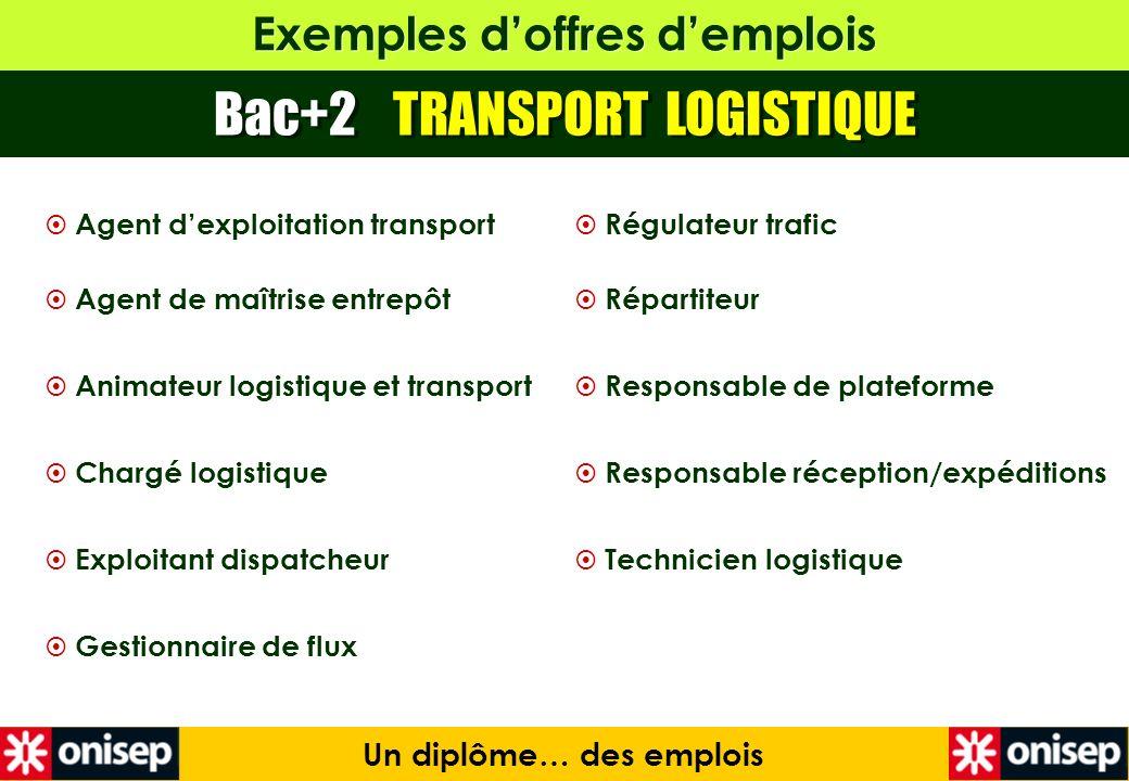 Exemples doffres demplois Bac+2 TRANSPORT LOGISTIQUE Un diplôme… des emplois Régulateur trafic Répartiteur Responsable de plateforme Responsable récep
