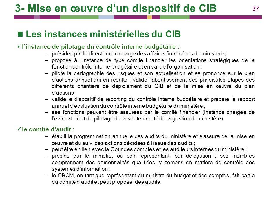 37 Les instances ministérielles du CIB linstance de pilotage du contrôle interne budgétaire : –présidée par le directeur en charge des affaires financ