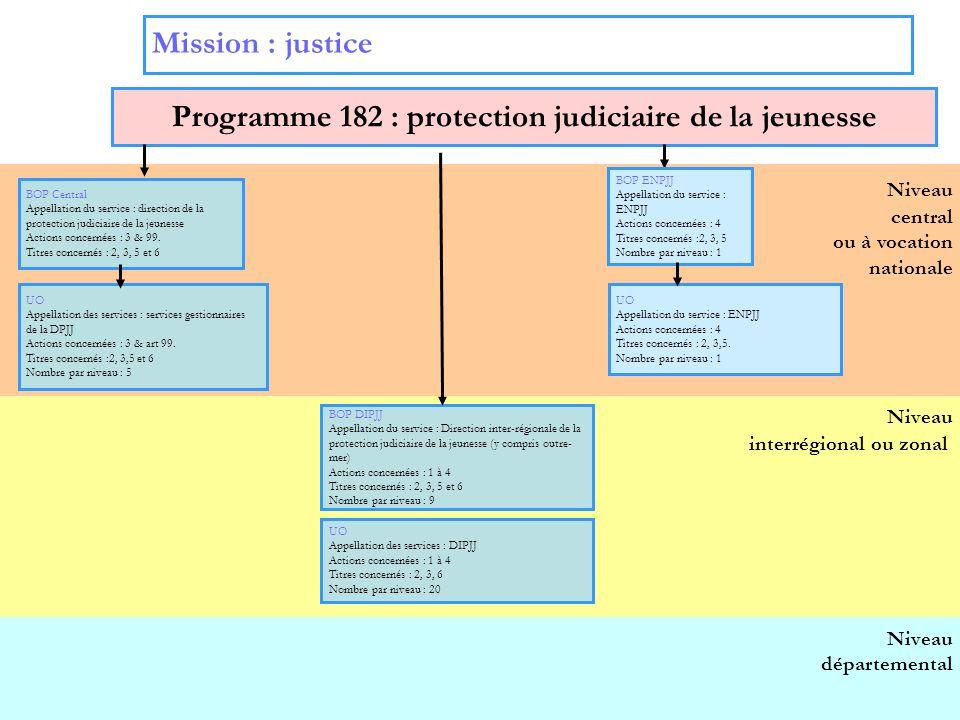 4 Niveau interrégional ou zonal Niveau central ou à vocation nationale Mission : justice Programme 182 : protection judiciaire de la jeunesse BOP DIPJ