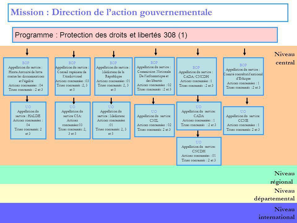 12 Niveau central Mission : Direction de laction gouvernementale Programme : Protection des droits et libertés 308 (1) BOP national BOP Appellation du