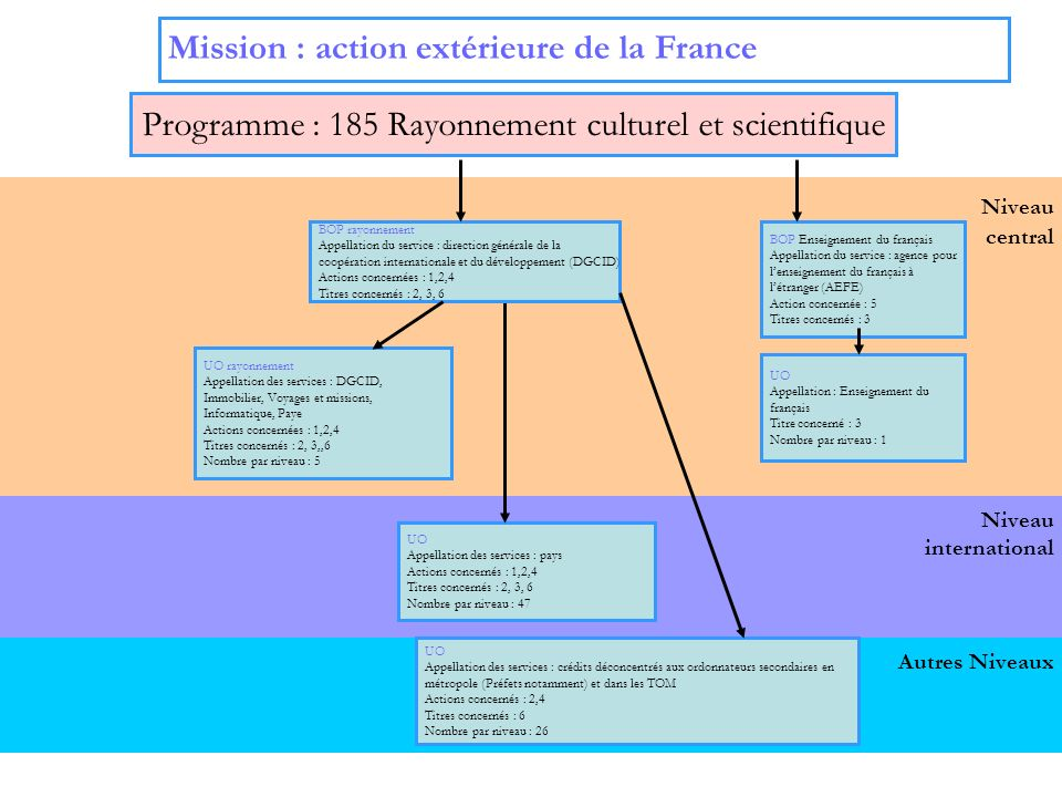 4 Niveau international Niveau central Mission : action extérieure de la France Programme : 151 Français à létranger et affaires consulaires UO Appellation des services : pays Actions concernées : 1, 2, 3 Titres concernés : 2, 3,5, 6 Nombre par niveau : 165 BOP DFAE et SERVICES CONSULAIRES Appellation du service : Direction des français à létranger et des étrangers en France (DFAE) Actions concernées : 1, 2, 3 Titres concernés : 2, 3, 5, 6 UO Appellation des services : DFAE, Soutien, Voyages et missions, Informatique, Paye Actions concernées : 1, 2, 3 Titres concernés : 2, 3, 5,6 Nombre par niveau : 5 Autres Niveaux