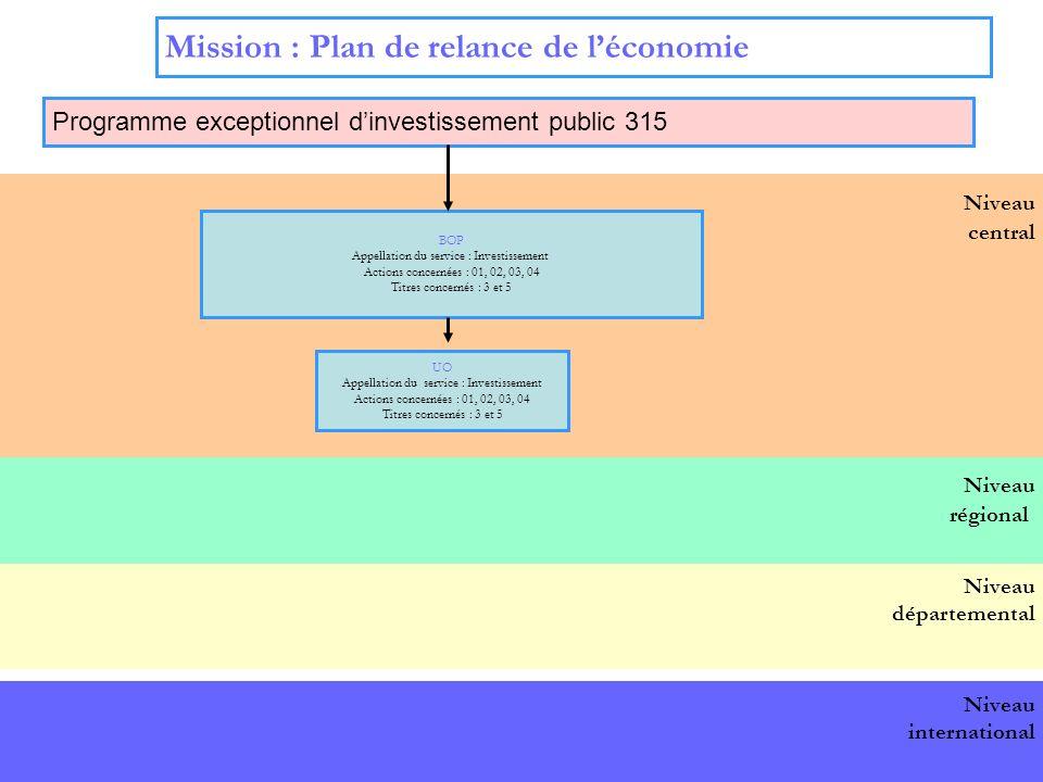 15 Niveau central Mission : Plan de relance de léconomie Programme exceptionnel dinvestissement public 315 BOP national BOP Appellation du service : Investissement Actions concernées : 01, 02, 03, 04 Titres concernés : 3 et 5 UO Appellation du service : Investissement Actions concernées : 01, 02, 03, 04 Titres concernés : 3 et 5 Niveau départemental Niveau international Niveau régional