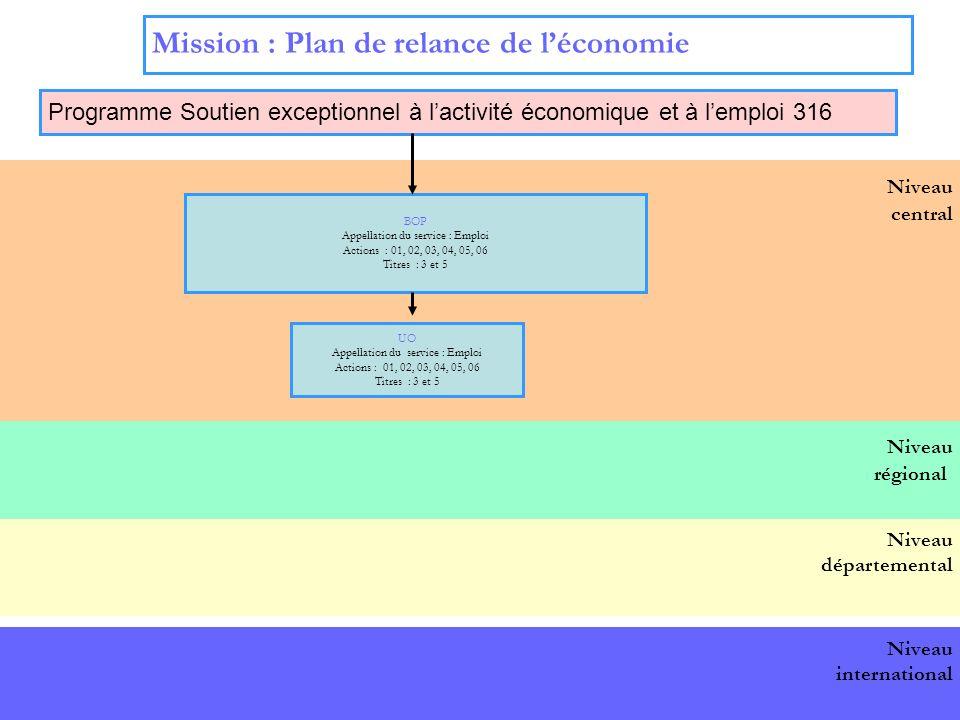 16 Niveau central Mission : Plan de relance de léconomie Programme Soutien exceptionnel à lactivité économique et à lemploi 316 BOP national BOP Appellation du service : Emploi Actions : 01, 02, 03, 04, 05, 06 Titres : 3 et 5 UO Appellation du service : Emploi Actions : 01, 02, 03, 04, 05, 06 Titres : 3 et 5 Niveau départemental Niveau international Niveau régional