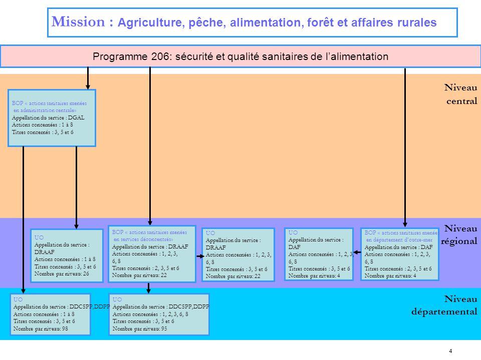 4 Niveau régional Niveau central Programme 206: sécurité et qualité sanitaires de lalimentation Niveau départemental Mission : Agriculture, pêche, ali