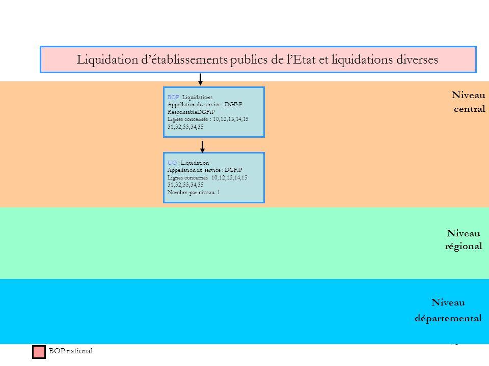 75 Niveau régional Niveau central Liquidation détablissements publics de lEtat et liquidations diverses BOP national BOP Liquidations Appellation du s