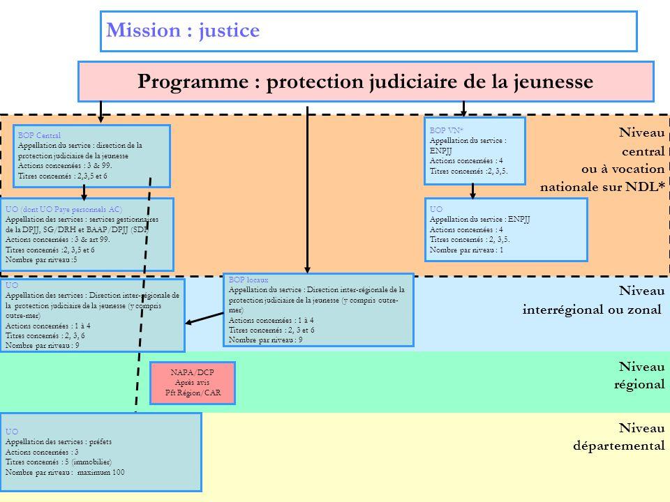 4 Niveau interrégional ou zonal Niveau régional Niveau central ou à vocation nationale sur NDL* Mission : justice Programme : protection judiciaire de