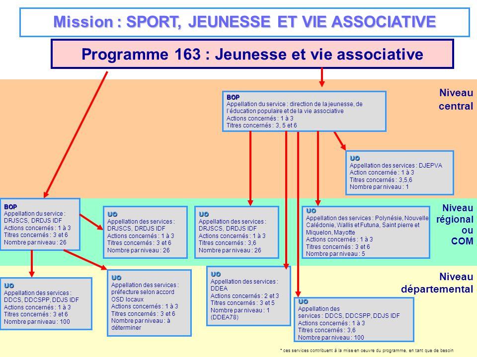 Niveau régional ou COM Niveau départemental Niveau central Programme 163 : Jeunesse et vie associative BOP Appellation du service : DRJSCS, DRDJS IDF