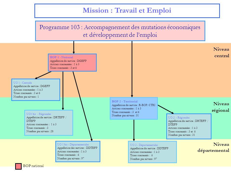 7 Niveau départemental Mission : Travail et Emploi BOP national Niveau régional Niveau central UO 1 - Centrale Appellation du service : DGEFP Actions