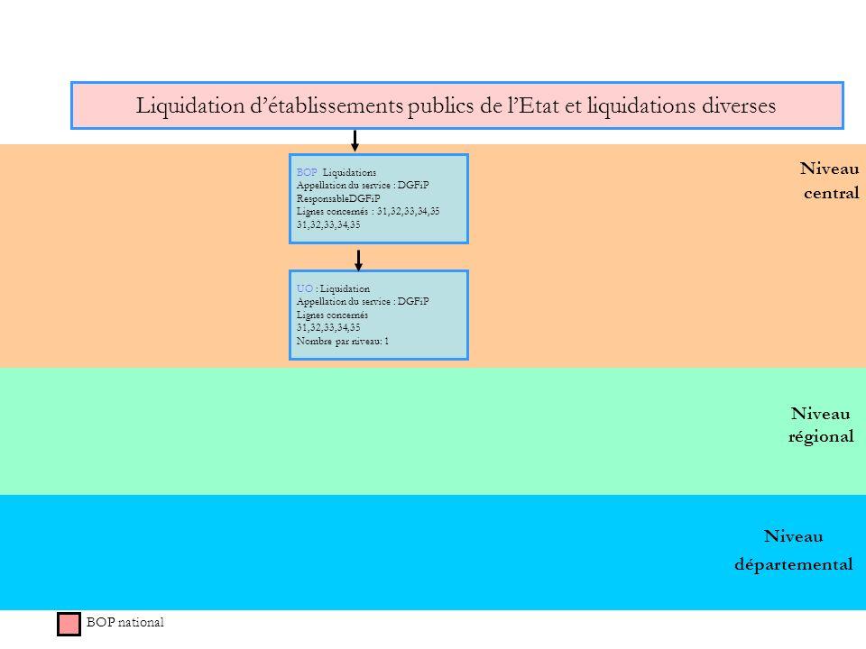 Niveau régional Niveau central Liquidation détablissements publics de lEtat et liquidations diverses BOP national BOP Liquidations Appellation du serv