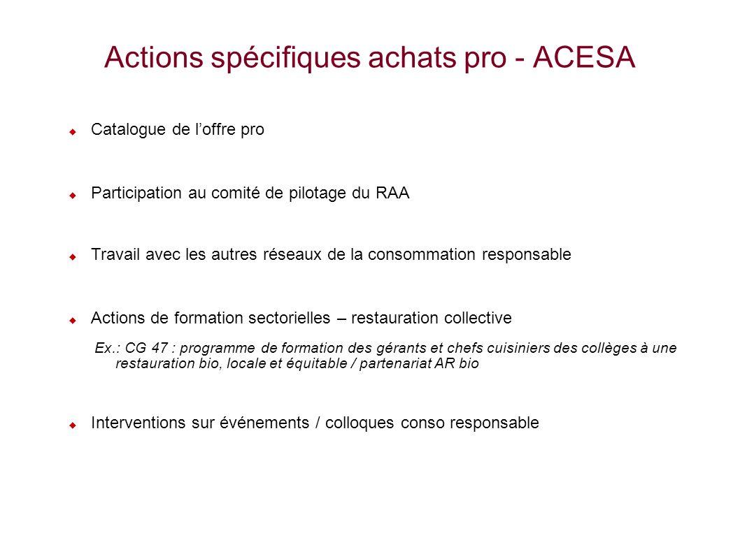 11 Actions spécifiques achats pro - ACESA Catalogue de loffre pro Participation au comité de pilotage du RAA Travail avec les autres réseaux de la con