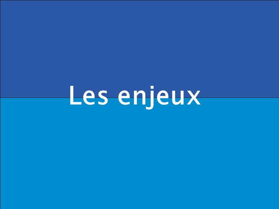 . DRB/ MCF - 2005 Les enjeux