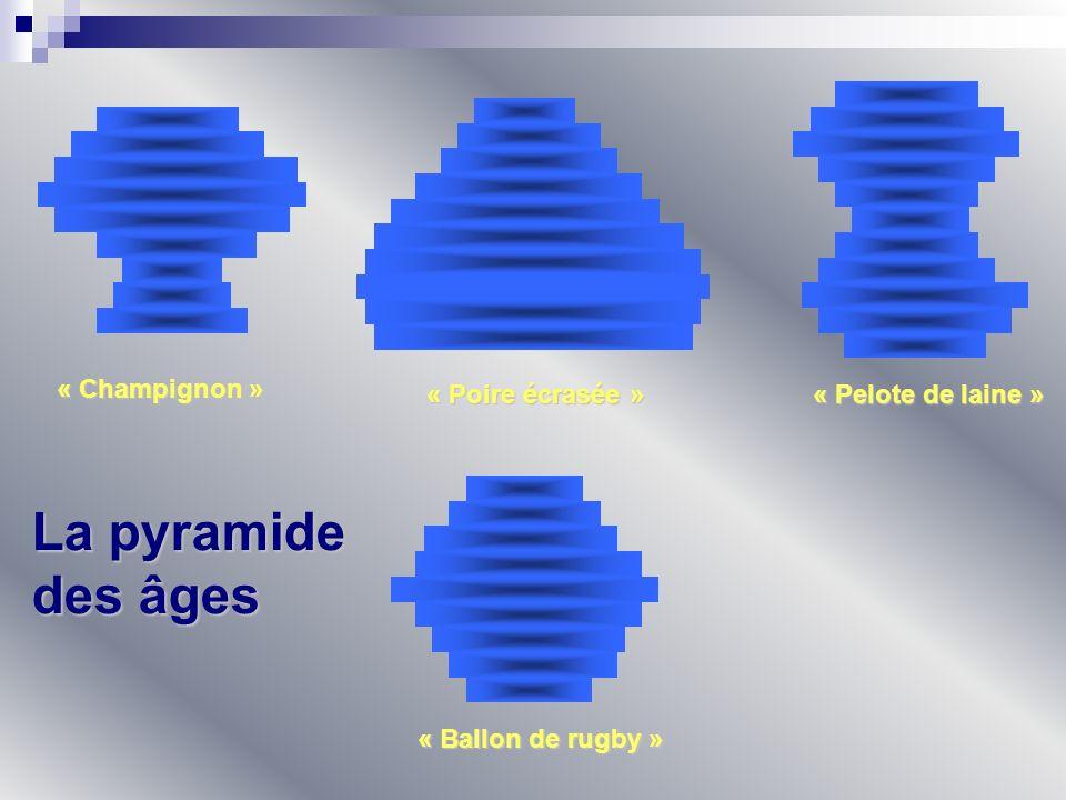 « Champignon » « Poire écrasée » « Pelote de laine » « Ballon de rugby » La pyramide des âges