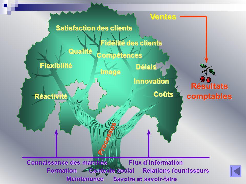 Ventes Satisfaction des clients Délais Innovation Coûts Qualité Flexibilité Fidélité des clients Image Réactivité Compétences Processus Connaissance d