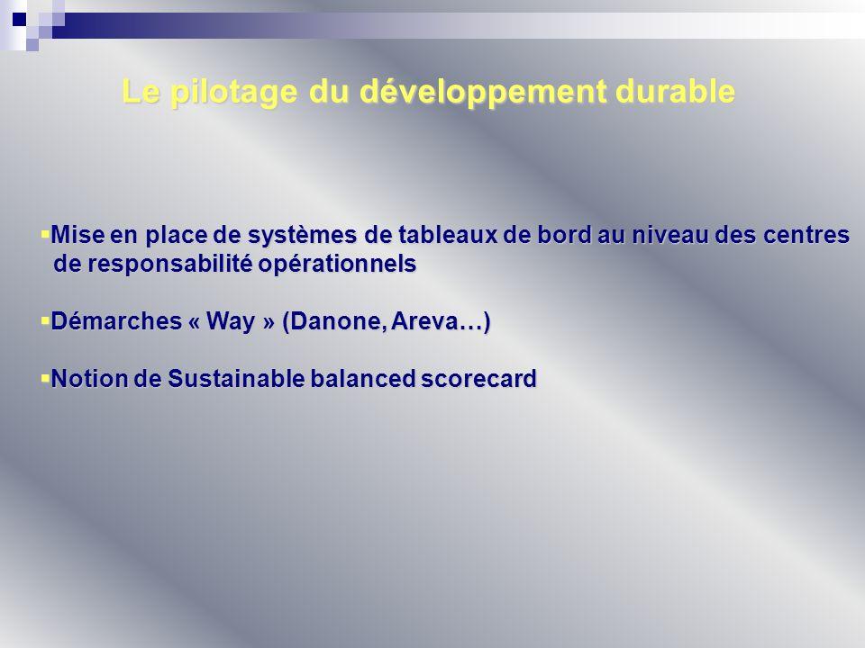La notion de Sustainable Balanced Scorecard (SBSC) Approche partielle Approche partielle Approche partagée Approche partagée Approche additive Approche additive Approche transversale Approche transversale Approche totale Approche totale Intégration de la problématique du développement durable dans le BSC Intégration de la problématique du développement durable dans le BSC Plusieurs approches : Plusieurs approches : 4 grandes logiques : 4 grandes logiques : Logique de type « crédibilité » Logique de type « crédibilité » Logique de type « efficience» Logique de type « efficience» Logique de type « innovation » Logique de type « innovation » Logique de type « progressiste » Logique de type « progressiste »