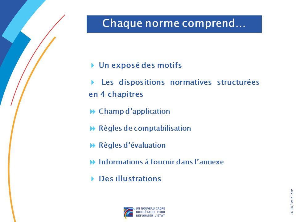 . DRB/ MCF - 2005 Chaque norme comprend… Un exposé des motifs Les dispositions normatives structurées en 4 chapitres Champ dapplication Règles de comp