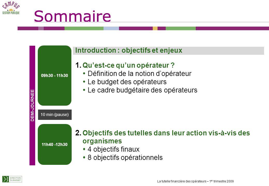 Sommaire La tutelle financière des opérateurs – 1 er trimestre 2009 Introduction : objectifs et enjeux 1.