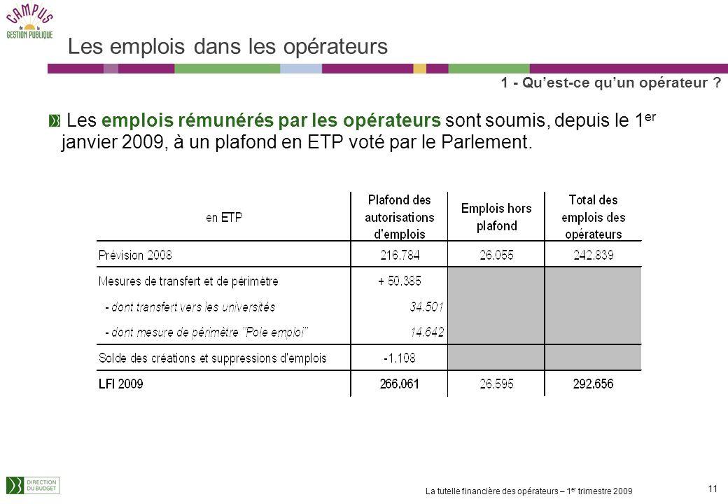 10 La tutelle financière des opérateurs – 1 er trimestre 2009 Un enjeu budgétaire important Un poids variable des opérateurs dans les programmes mais