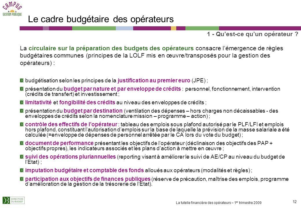 11 La tutelle financière des opérateurs – 1 er trimestre 2009 Les emplois dans les opérateurs Les emplois rémunérés par les opérateurs sont soumis, de