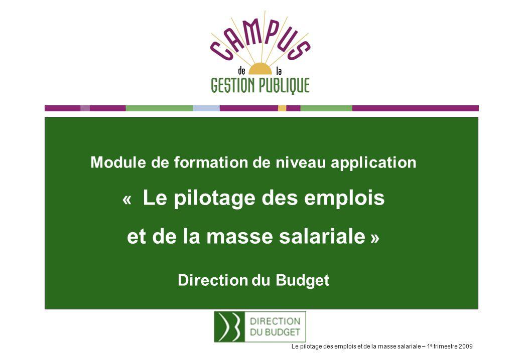 Module de formation de niveau application « Le pilotage des emplois et de la masse salariale » Direction du Budget Le pilotage des emplois et de la masse salariale – 1 e trimestre 2009