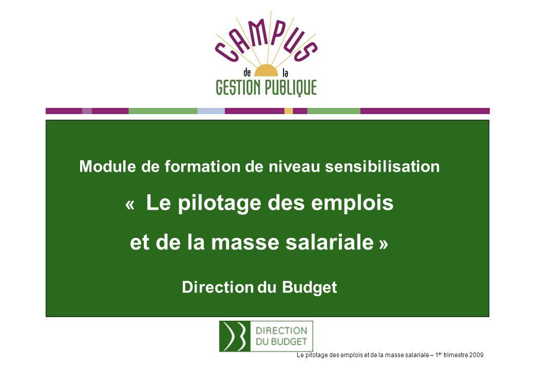 Module de formation de niveau sensibilisation « Le pilotage des emplois et de la masse salariale » Direction du Budget Le pilotage des emplois et de la masse salariale – 1 er trimestre 2009