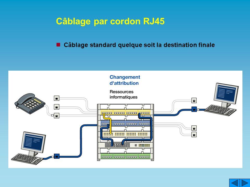 Câblage par cordon RJ45 Câblage standard quelque soit la destination finale