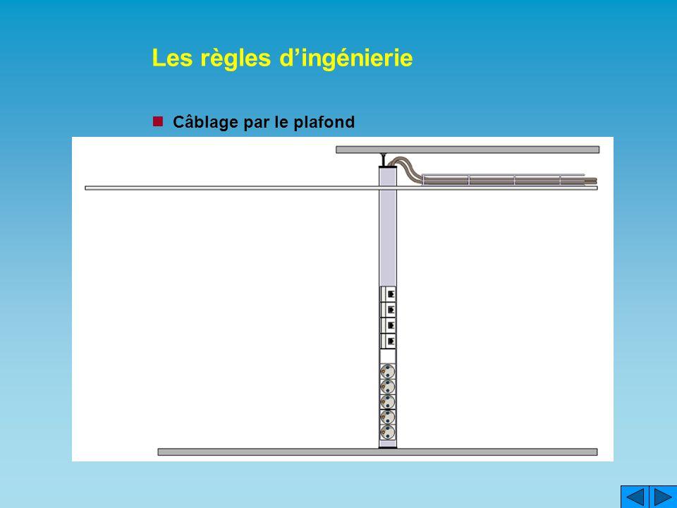 Les règles dingénierie Câblage par le plafond