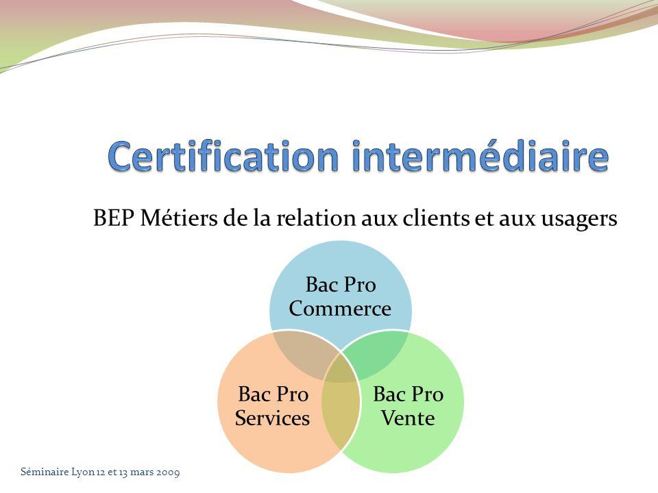 BEP Métiers de la relation aux clients et aux usagers Bac Pro Commerce Bac Pro Vente Bac Pro Services Séminaire Lyon 12 et 13 mars 2009
