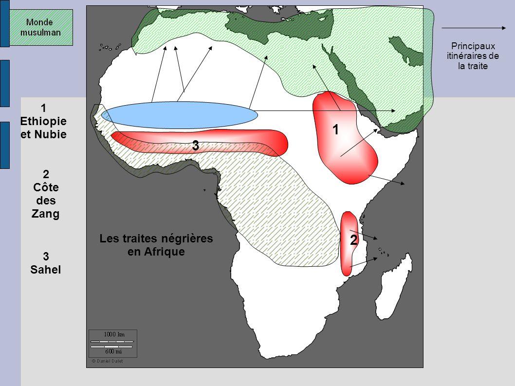 1 2 3 Zones pourvoyeuse s d'esclaves 1 Ethiopie et Nubie 2 Côte des Zang 3 Sahel Royaumes et empires noirs approvisionnant le monde musulman Principau