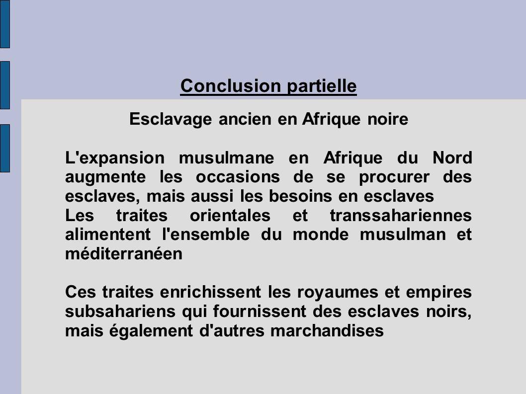 Conclusion partielle Esclavage ancien en Afrique noire L'expansion musulmane en Afrique du Nord augmente les occasions de se procurer des esclaves, ma