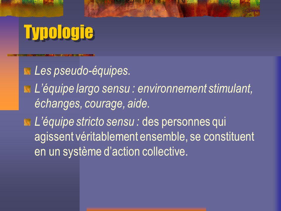 Typologie Les pseudo-équipes.