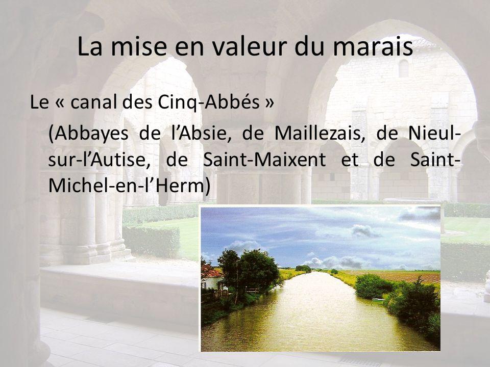 La mise en valeur du marais Le « canal des Cinq-Abbés » (Abbayes de lAbsie, de Maillezais, de Nieul- sur-lAutise, de Saint-Maixent et de Saint- Michel