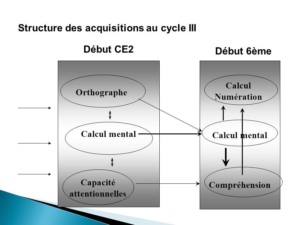 24 Structure des acquisitions au cycle III Orthographe Calcul mental Capacité attentionnelles Début CE2 Début 6ème Calcul Numération Compréhension Calcul mental