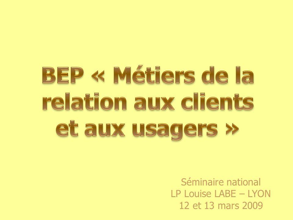 Séminaire national LP Louise LABE – LYON 12 et 13 mars 2009