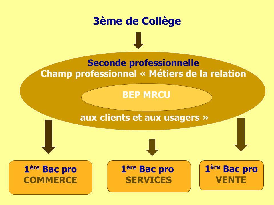 3ème de Collège Seconde professionnelle Champ professionnel « Métiers de la relation aux clients et aux usagers » BEP MRCU 1 ère Bac pro COMMERCE 1 ère Bac pro SERVICES 1 ère Bac pro VENTE