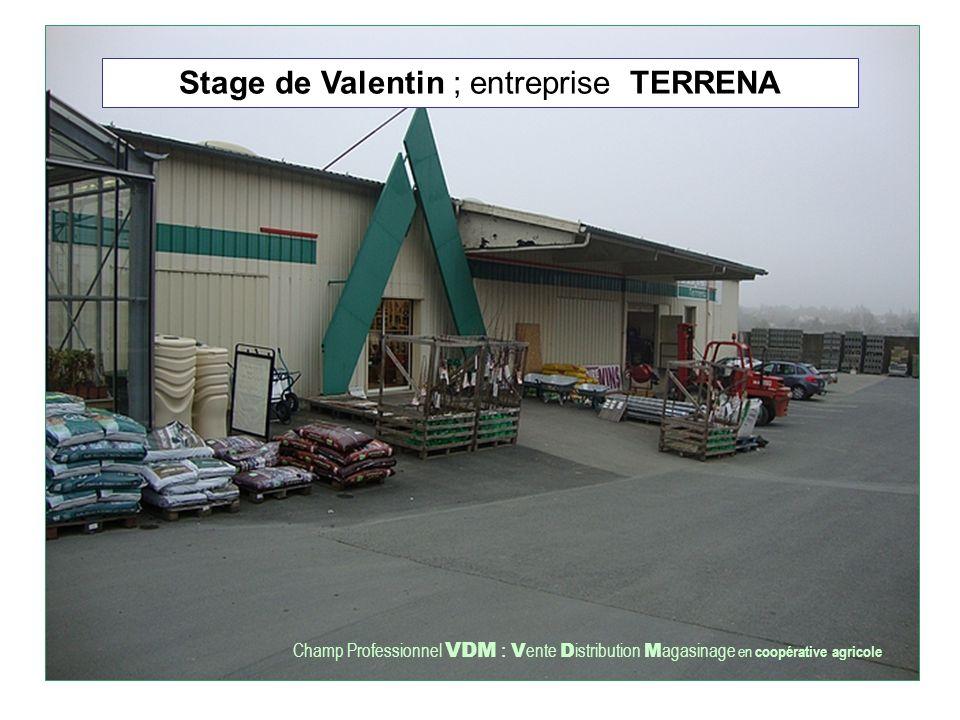 Stage de Valentin ; entreprise TERRENA Champ Professionnel VDM : V ente D istribution M agasinage en coopérative agricole